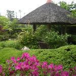 退蔵院庭園の写真その2