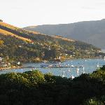 Akaroa late in the day
