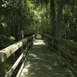 Boardwalk to Suwanee River