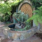 Iguana fountain