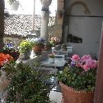 terrazzo fiorito della prima colazione