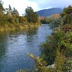 Tongariro River near Turangi