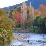 Tongariro River near Turangi 3