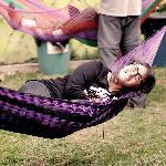 hammocks - hill out