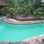 Lovely small pool