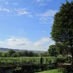 View @ Garden - WONDERFUL!