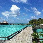 Beach view from Water villas
