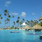 Pool at Palma Real!