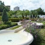Hollis Garden
