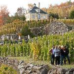 Interpretative visit on viticulture.