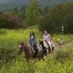 Ballade au Ranch d'Oso