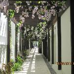 Side Hallway to beach