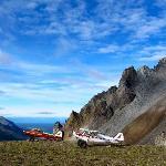 Flight Safari Adventure