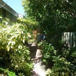 Wunderschöner Garten der Anlage