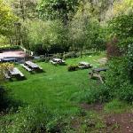 The Garden...
