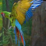 Foto de Zoo of the city of Barranquilla