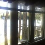 window from bedroom
