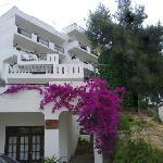 Arias House