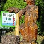 Welcome to Tuckers Inn