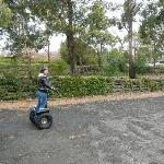 Learning to drive a segway