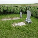 The Ashley Jewish Cemetery has a separately fenced area containing infant burials