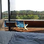 Blick vom Zimmer auf den Balkon und die Pinien