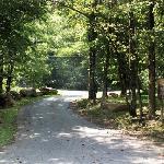 Moonshine Creek Entrance