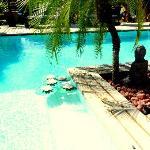 Linda piscina perto do jardim tropical