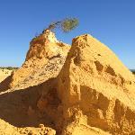 pinacles in desert
