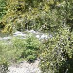 This is the running Eel River located at bottom of their property; BEAUTIFUL!!!