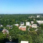 Piedmont Park view from our 26th floor Grand King - Stunning