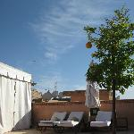 Roof top sun beds under the orange trees