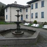 裏庭の噴水