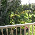 View of the amazing gardens from the bedroom balcony