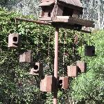 The birdhouse in the garden!