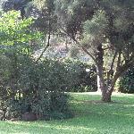 Gardens of Hotel Boulevard