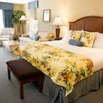 Suite sized king guest room