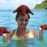 grand case sea stars thanks to flyfromusa.com