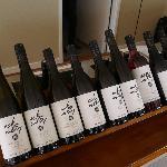 Wine tasting area - Esk Valley Winery