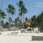 beach at MC
