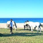 Íto y sus caballos ...