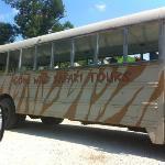 Gone Wild Safari Park
