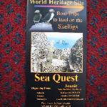 Sea Quest for Skellig Michael