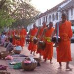 The monks at the daily early morning alms collection