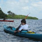 Sea Life Kayak Adventure experience...