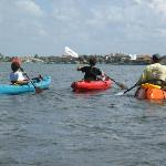 Kayaking experience with Sea Life Kayak Adventures