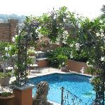 view of pool from Veranda