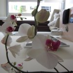 Beautiful orchids in our room.