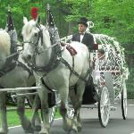 Chetola wedding carriage
