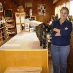 Carlson Vineyard Cat & Staff